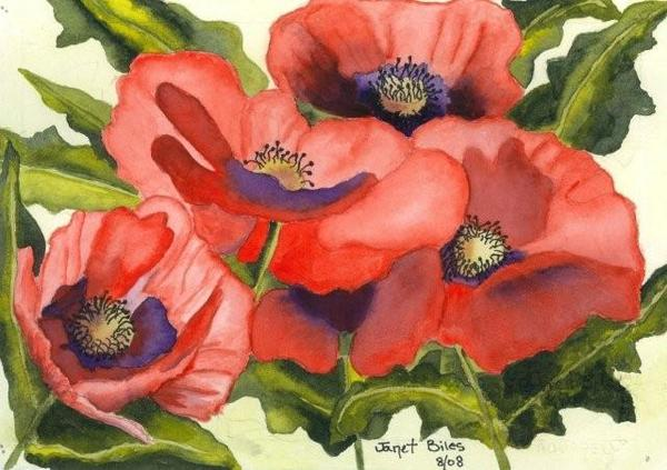 Re Poppies